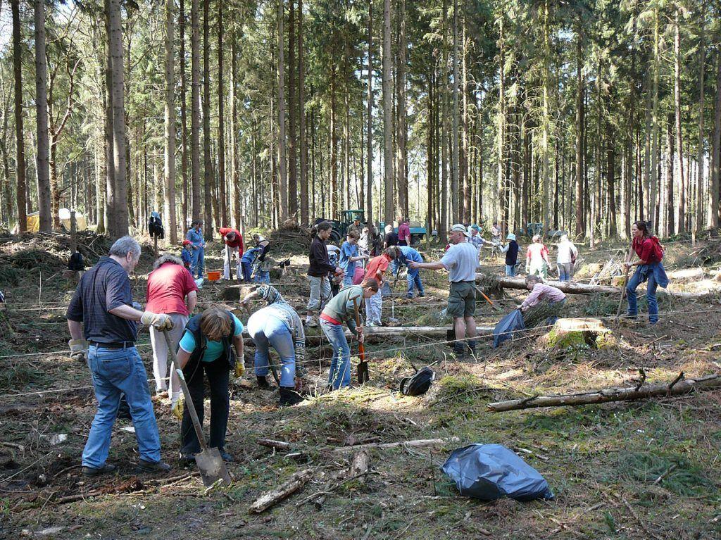 Baumpflanzung als Event mit Kunden und Mitarbeitern