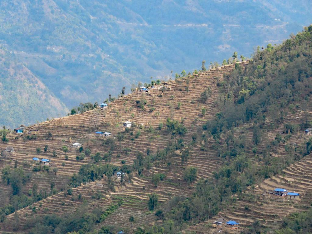 Jalapa Nepal - Wiederbewaldung degradierter Flächen